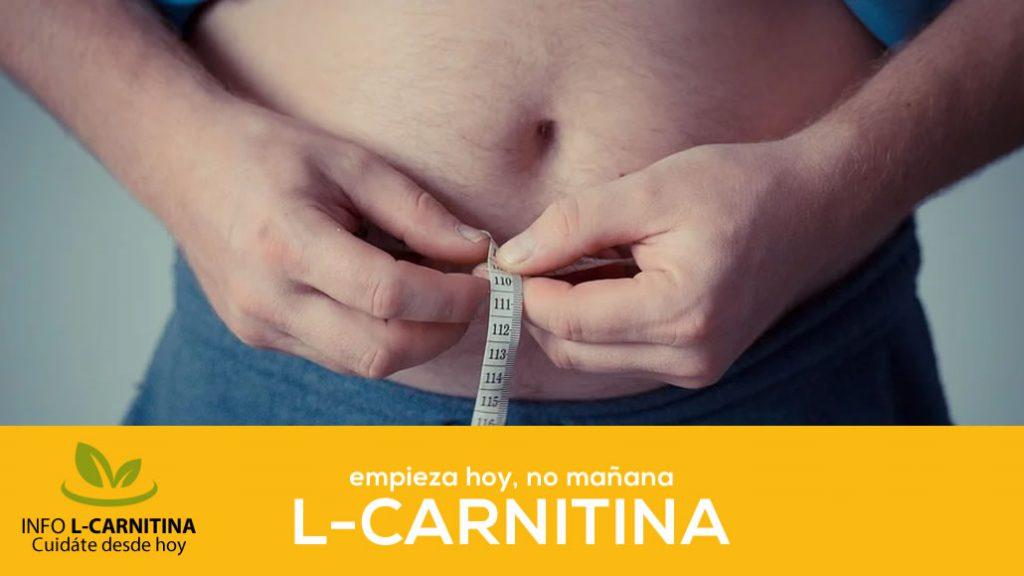 Indicaciones Para Tomar L Carnitina